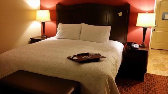 Hampton Inn Union City: Standard King Suite