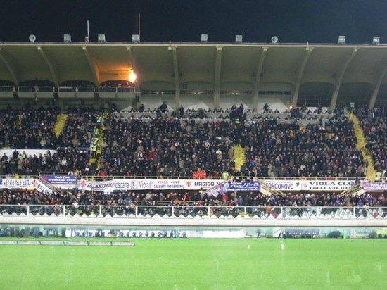 Stadio Artemio Franchi: Crowd at the match (versus Roma)