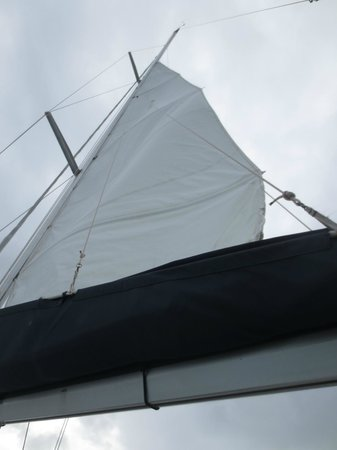 Rumbaba Charters: The sail going up
