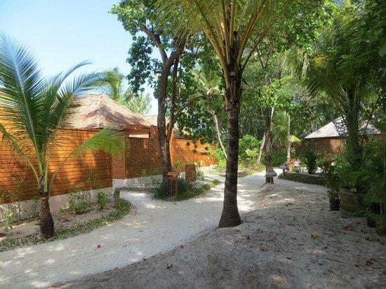 Veligandu Island Resort & Spa : Insel nun volll bebaut