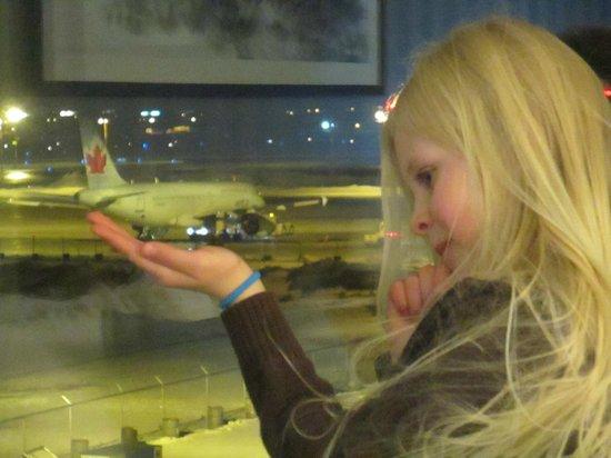The Grand Winnipeg Airport Hotel: eye of the beholder