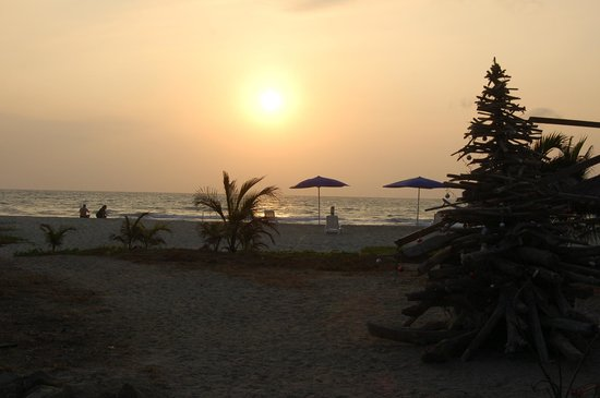 Canoa Beach Hotel: sunset with driftwood xmas tree