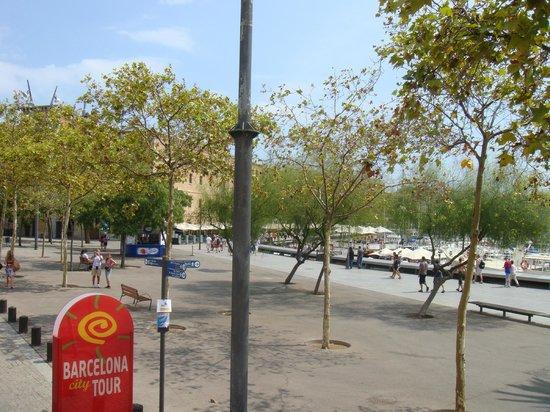 Olivia Plaza Hotel: Остановка туристического автобуса