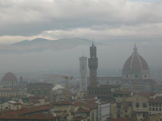 Stemma in facciata - Picture of Museo Stefano Bardini, Florence ...