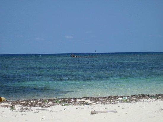 Mayan Beach Garden: The shipwreck not far from MBG