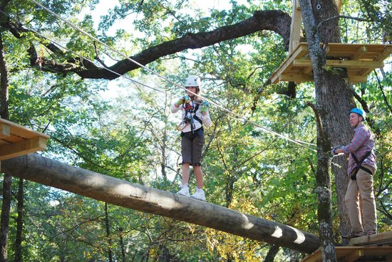 Trinity Forest Adventure Park : Yellow Course