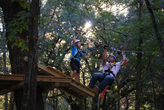 Trinity Forest Adventure Park : Children as young as six can participate