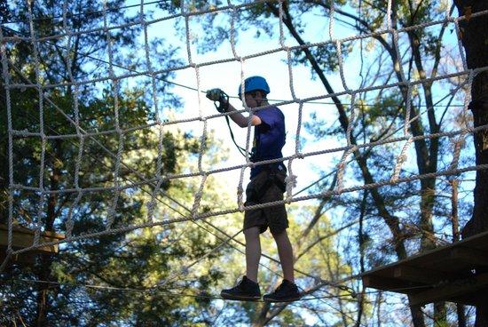 Trinity Forest Adventure Park : Cargo Net