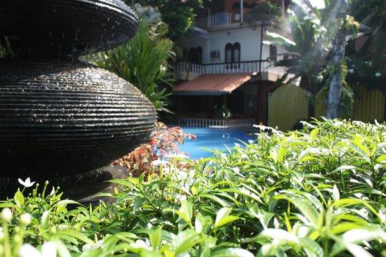 Flower Garden Hotel: бассейн