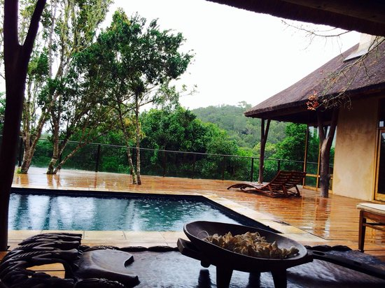 Trogon House and Forest Spa : Rainning on the swimming pool