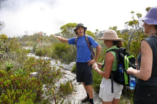 Hike Table Mountain: Riann describing the vegetation