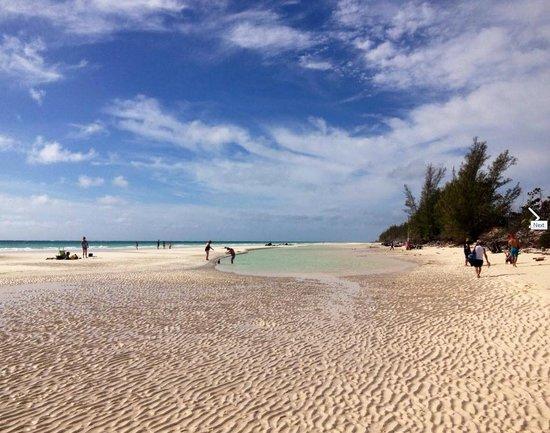 Grand Lucayan, Bahamas: Gold Beach