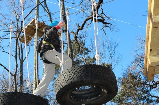Trinity Forest Adventure Park : Tire Obstacle on Green I Course