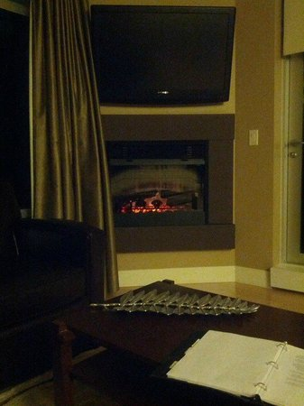 The Parkside Hotel & Spa : The living room fireplace