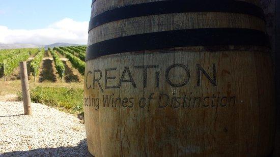 Creation Wines: Vineyard