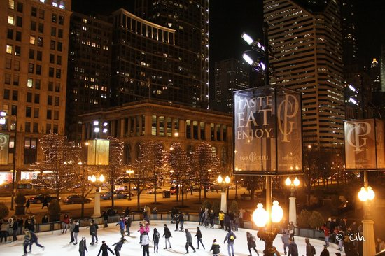 Chicago, IL: Millennium Park - Winter 2013