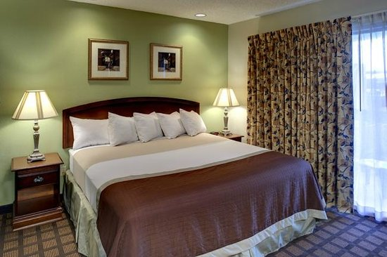Orangewood Suites: King Size Bed For Single Suites