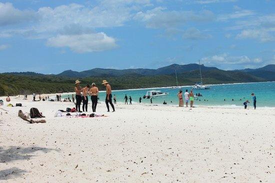 Big Fury Island Tour: Whitehaven beach is the awesome ...included Buffet lunch !