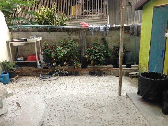Kikie's House: The yard outside the room where we saw a rat
