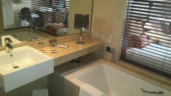 Hotel Dreams Araucania: Vista del baño