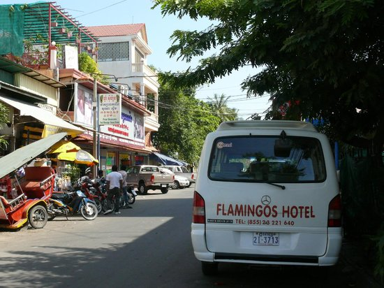 Flamingos Hotel: На этом микроавтобусе забирают постояльцев из аэропорта)