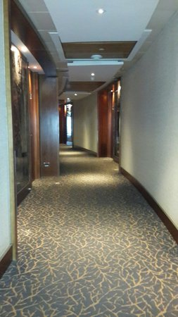 Hotel Dreams Araucania: Vista pasillo desde hall de ascensores