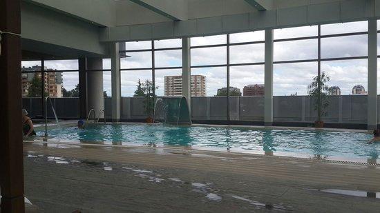 Hotel Dreams Araucania: Vista pileta