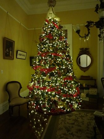 Ashton's Bed and Breakfast: Front room and Christmas tree