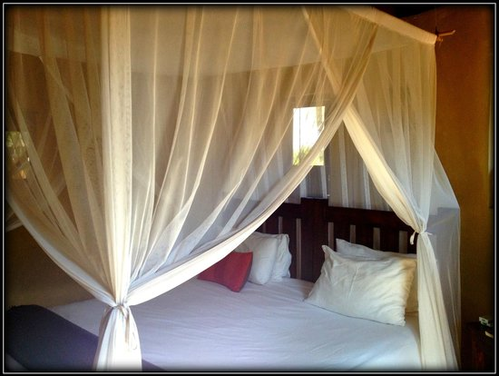 Africa on Foot Camp : Ghwarrie chalet: a secure rondavel-type building, great bed, linens lush and luxurious, mosquito
