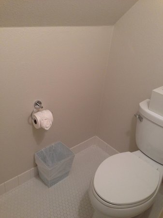"Lithia Springs Resort: toilet ""room"", heh heh"