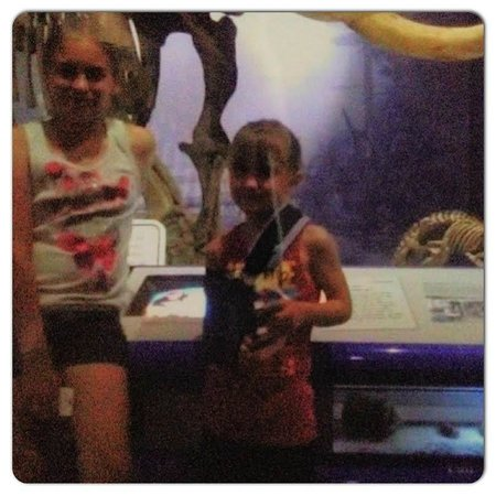 Illinois State Museum: Standing in front of the huge skeleton