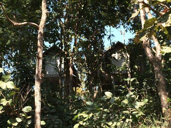 Karen village: the guest houses