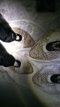 West Kelowna, Canadá: My friends' snowshoed feet
