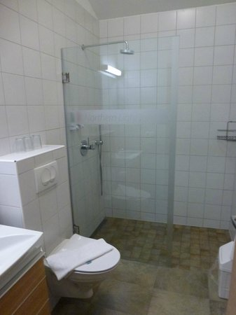 Northern Light Inn: Bathroom