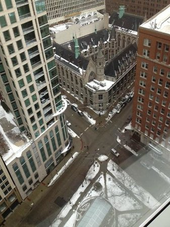 Sofitel Chicago Magnificent Mile: First day- What a view!- and the tea house below was awesome