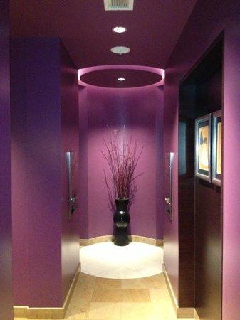 Sofitel Chicago Magnificent Mile: 2nd floor ladies bath