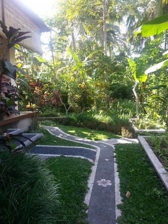 ONEWORLD retreats Kumara: vegetation