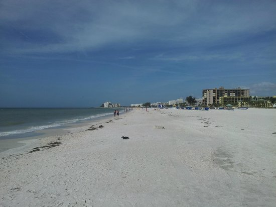 Gulf Beach Resort: st. pete beach