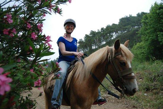 Pinar Horse Safari: Beautiful!