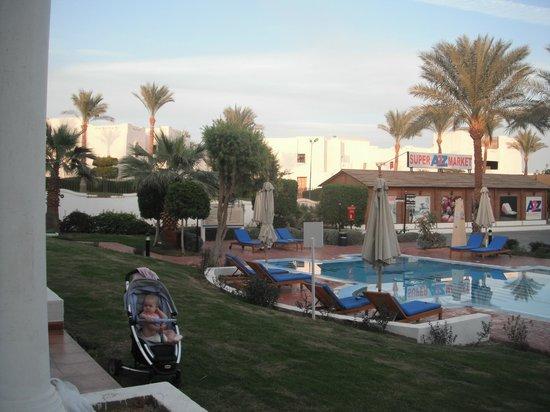 Hilton Sharm Dreams Resort : наш бассейн
