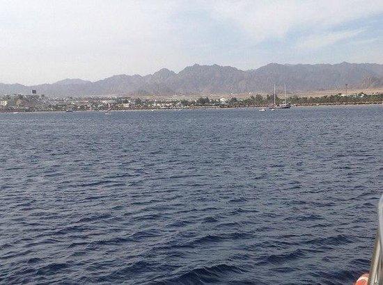 Hilton Sharm Dreams Resort : Море