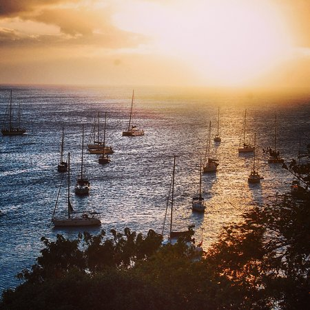 Gîtes Mangoplaya : Port de Deshaies