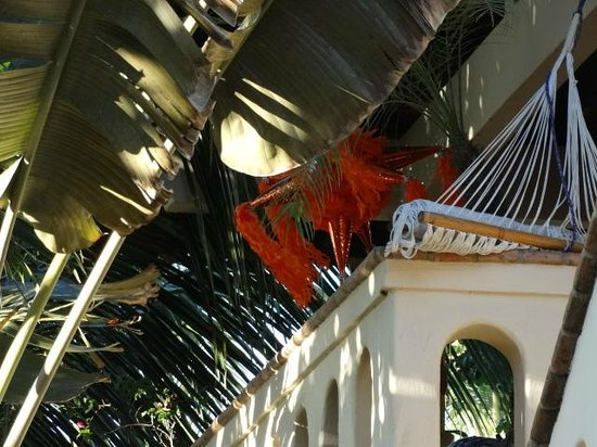 Macondo Bungalows: Pinata hanging from the Rooftop Room