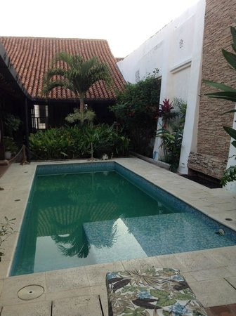 Bioma Boutique Hotel Mompox: Piscina