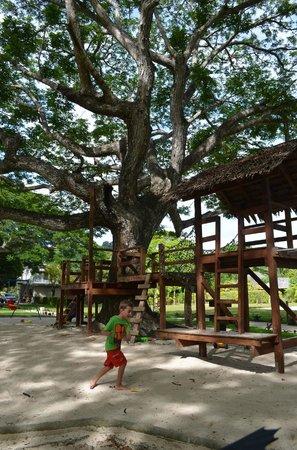 Cocomo Resort : Playground