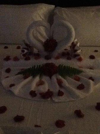 Sandals Ochi Beach Resort: sue and dave, chichester