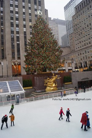 The Rink at Rockefeller Center : pista rockfeler