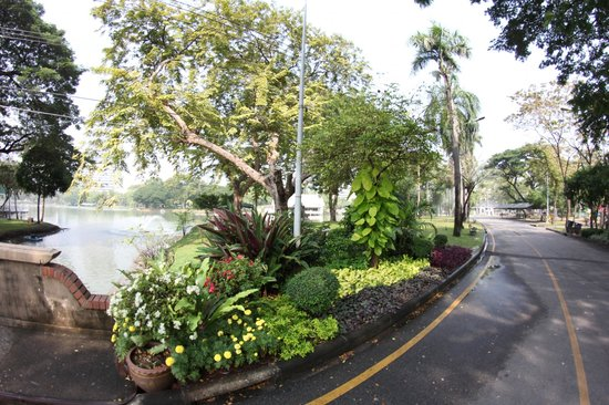 SO Sofitel Bangkok: lumpini park