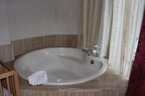Majestic Elegance Punta Cana: bath