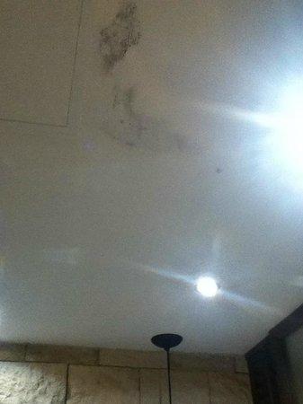 Hard Rock Hotel Riviera Maya : Molds on the bathroom ceiling room 6248 Dec 2013